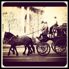 Harrods Horse and Carriage by @dgdarius on Instagram