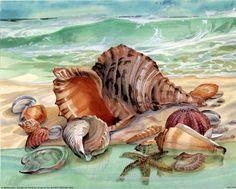 paintings pf sea shells | Brown Conch seashells Art Print Poster ocean - 19x13