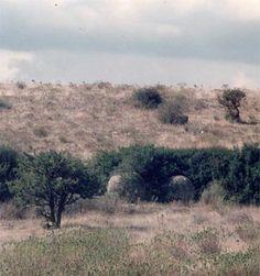 Una scoperta Archeologica Rivoluziona la datazione storica di Monserrato – Contus Antigus – Leggende e Tradizioni di Sardegna
