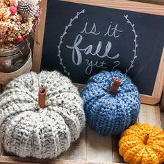 These cute pumpkins come in three perfect sizes for decorating your house this fall! Crochet Fall, Holiday Crochet, Knit Crochet, Diy Pumpkin, Cute Pumpkin, Crochet Ideas, Crochet Projects, Fall Crafts, Diy Crafts