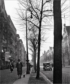 John Gutmann, Autumn, Berlin-Charlottenburg, 1933