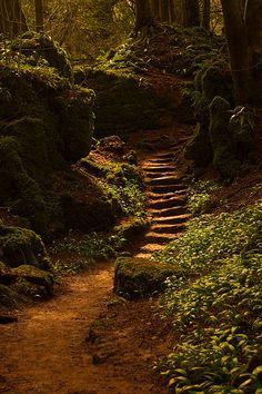 Dit natuurgebied is van Eva het is haar geheimen plekje.