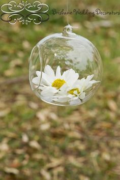 Wedding ceremony decor ~ hanging glass globes with a sweet fresh daisy x