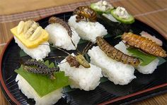 sushi insecte