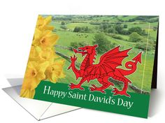Happy Saint David's Day- Daffodil and Welsh Flag/Scene card. Personalize any greeting card for no additional cost! Cards are shipped the Next Business Day. Saint Davids, Gift Cards, Greeting Cards, Welsh Gifts, Saint David's Day, Welsh Dragon, Daffodils, Wales, Holiday Cards