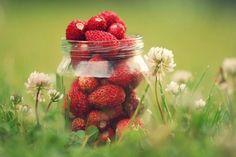 -BLEN: Strawberry Jelly-  Strawberries Strawberry Art, Strawberry Picking, Strawberry Plants, Strawberry Patch, Strawberry Pictures, Strawberry Delight, Strawberry Shortcake, Strawberry Fields Forever, Snack Recipes