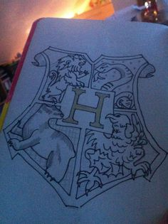Harry potter wreck this journal