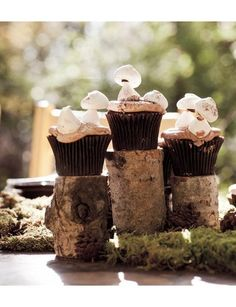 Meringue Mushroom Cupcakes - And I thought I was over the cupcake craze