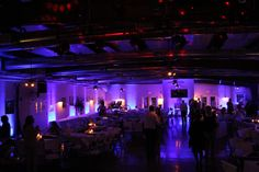 Wedding Entertainment, Five Star, Vineyard, Reception, Entertaining, Lighting, Concert, Light Fixtures, Recital