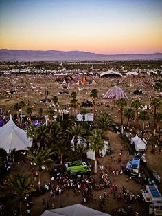 Reblogged from coachella  - It's beginning to feel a lot like Coachella!