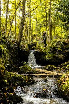 Ysperklamm - Ein besonderes Ausflugsziel in Niederösterreich! Visit Austria, Central Europe, Alps, Waterfall, Outdoor, Vacation, Nature, Beauty, Amazing Places To Visit