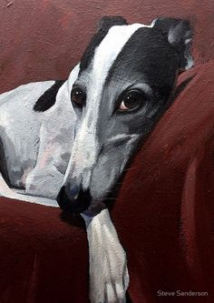 Greyhound.. by Steve Sanderson