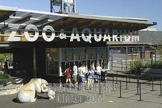 Point Defiance Zoo - Tacoma, WA.
