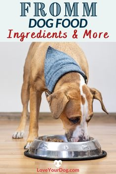Thinking Fromm might be the right dog food for your pup? We break down everything you need to know, including recalls, cost & more in this Fromm dog food review. #loveyourdog #frommdogfood #dogfoodreviews #bestdogfood #dogfood #whatsthebestdogfood Dog Food Reviews, Grain Free Dog Food, Food Cost, Best Puppies, Best Dog Food, R Dogs, Healthy Choices, Your Dog