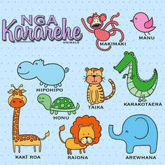 What other Kararehe do you know in Te Reo Māori? Animal Activities, Infant Activities, Baby Animals, Funny Animals, Cute Animals, Pet Names, Baby Names, Girl Names, Funny Animal Videos