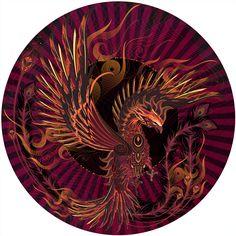 FIREFLIGHT - Chris Saunders