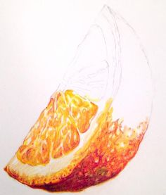 Look at this amazing hyper-real orange segment! Learn how to paint it as part of Kate Clarke's still life textures course now available on ArtTutor Natural Forms Gcse, Natural Form Art, Arte Gcse, Pencil Drawings, Art Drawings, Pencil Texture, Gcse Art Sketchbook, Fruits Drawing, Observational Drawing