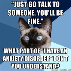 (lol) anxiety cat--I find this even funnier because this cat looks exactly like my cat