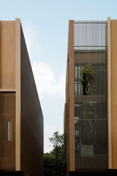Studionomad has built Lom Haijai, block of five apartments in Bangkok, each with its own tree growing through the louvres of the facade. Architecture Courtyard, Facade Architecture, Residential Architecture, Wood Facade, Concrete Facade, Public Space Design, Public Spaces, Small Terrace, Big Building