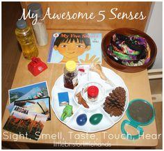 Senses Activities For Preschoolers Who We Are 5 senses activity discovery table set up sight smell taste touch hearWho We Are 5 senses activity discovery table set up sight smell taste touch hear Five Senses Preschool, 5 Senses Activities, My Five Senses, Eyfs Activities, Kindergarten Science, Preschool Learning, Science Activities, Science Toddlers, Science Area