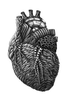 Beautiful heart sketch i really want a heart tattoo