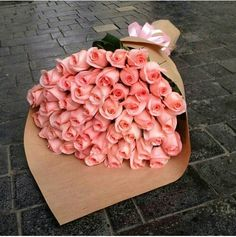 grafika flowers, roses, and pink