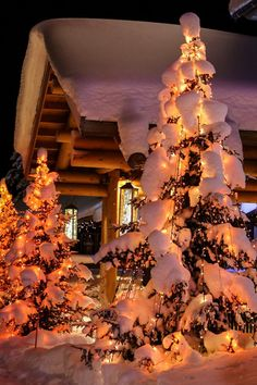 Weihnachten Untitled Selecting The Perfect Garden Tools For Your Yard As winter days grow longer, th Christmas Scenes, Christmas Mood, Christmas Lights, Christmas Decorations, Holiday Decor, Winter Pictures, Christmas Pictures, Winter Wonderland Christmas, Winter Magic