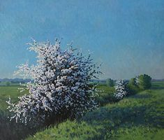 April Morning Landscape Paintings, Plants, Garden, Garten, Landscape, Planters, Gardening, Outdoor, Home Landscaping