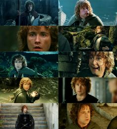 Pippin is THE BEST! <3 Bravery, valor, courageousness, and adorableness all in one little guy. <3 Love you, Pippin! <3