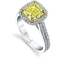 Women's Diamond Rings by Harry Kotlar 2.4ct Cushion Cut Harmonie Ring ($54,100) ❤ liked on Polyvore featuring jewelry, rings, yellow diamond ring, yellow jewelry, cushion cut ring, band rings and diamond jewelry