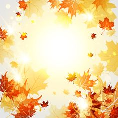 Bright autumn leaves vector backgrounds 06