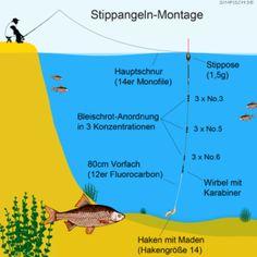 Waggler,3x Pose Zander Köderfisch Schwimmer Hecht Wels Waller Raubfisch