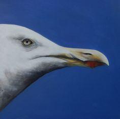 Herring Gull painting drawing by Suzy Sharpe
