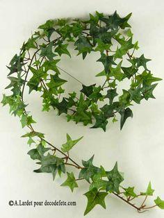 lierre pour la déco de table Deco Table, Decoration, Communion, Weed, Herbs, Flowers, Plants, Celtic Wedding, Ivy