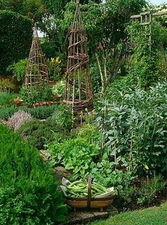 Kitchen garden - Any future garden might be small, but when I have one, I'll try to pack as much in as possible.  ;-)
