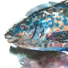 Blåstål Fish, The Originals, Pets, Animals, Atelier, Animales, Animaux, Pisces, Animal