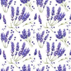 Wildflower lavender flower pattern in a watercolor style isolated.. Illustration about summer, blue, petal, watercolour, flower, spring, seamless, wallpaper, drawing - 82038615 Watercolor Pattern, Watercolor Illustration, Watercolor Flowers, Watercolour, Lavender Flowers, Wild Flowers, Purple Wildflowers, Old Wallpaper, Pattern Wallpaper