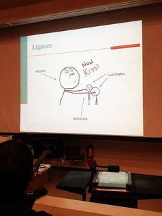 Biochemistry: Ligases - a cartoon. Definitely something that students won't forget...
