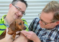 Microchip story: Zoe was stolen from her yard, then found again after 4 years.