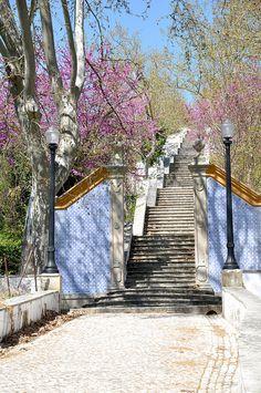 2015-04-11 Tomar - Steps to Capela de Nossa Senhora da Piedade,  Tomar Municipality, Santarem, Portugal