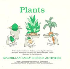 Plants MacMillan Early Science Activities Seeds Structure Needs Environment  #MacMillan #WorkSheets