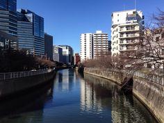 Meguro river , Tokyo Japan  ←Taken with iPhone camera
