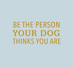 Be Pawesome. Be fun. Be silly. Because the weekend is too short to be anything but happy#carolinacorrodi #premiumdogfashion #dogfashionwithapurpose             #hunde #traumhund #9gagcute #cutedog #hundeaufinstagram #dogtraining #swissdogs #ladbible #chien #weeklyfluff #thedodo #instachien #dogsofinstagram #swissdog #petfluencer #dogblogger #hundefotografie #hundar #dogsofinsta #zurich #geneva #hund #dogwithamission #dogstagram #doglover #dogs #hundeliebe Dog Fashion, Zurich, Geneva, Dog Training, Cute Dogs, Your Dog, Dog Lovers, Shorts, Happy