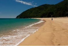 Golden Bay - perfect camping location in #NewZealand!