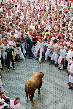 Image: A bull stands surrounded by a crowd of runners at the San Fermin Running of the Bulls festival in Pamplona, Spain, on July 7 (© Pablo Blazquez Dominguez/Getty Images) Madrid, San Fermin Pamplona, Running Of The Bulls, Barcelona, Nba Funny, Spanish Culture, Festivals Around The World, Basque Country, Spain And Portugal