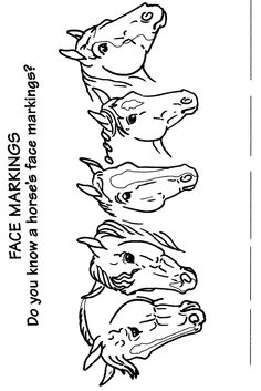 the saddle club coloring pages | Horse Color Crossword | Camp Crafts | Pinterest | Hästar