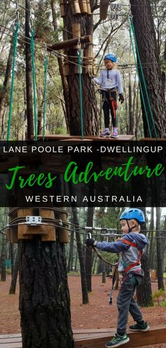 Trees Adventure Lane Poole Park near Dwellingup, Western Australia Western Australia, Australia Travel, Travel With Kids, Family Travel, Where Is Bora Bora, Cheap Places To Travel, Us Travel Destinations, Holiday Destinations, Travel Reviews