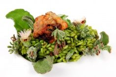 Arroz de verduras del desierto.  Receta de Rodrigo de la Calle  http://www.culturamas.es/ocio/2012/01/09/santiago-orts-gastrobotanica/