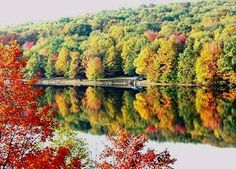 Indian Lake, PA - we go to New England in the fall, but the best colors are right here!
