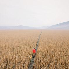 """Create your own path.  Image by @bogdan.tomsa / #VSCOcam C3 bgdn.vsco.co"""